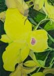 Cattleya skinneri,140x100 cm, 2010